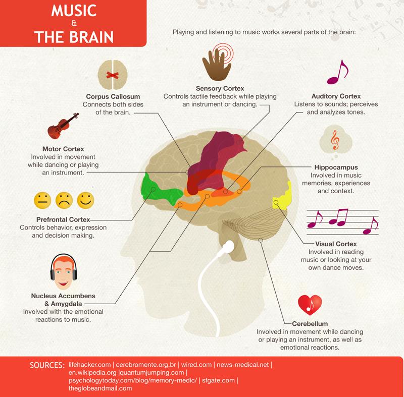 cerebro_musica_2